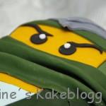 Lego Ninjago Henrik ansikt